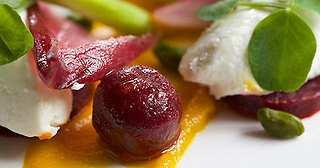Luxury hotels with gourmet vegetarian menus